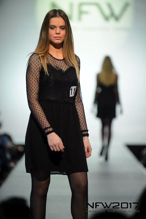 model contest 201722